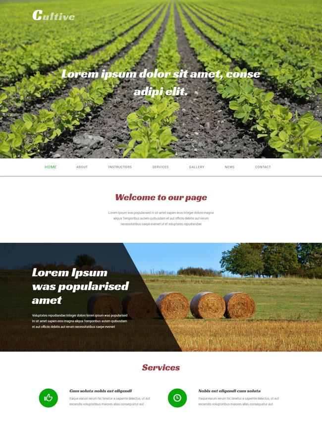 燕麦种植招商网站模块