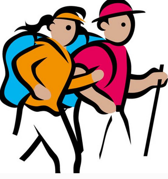 体育、运动类网站建设方案 行业网站建设方案 建站  第1张