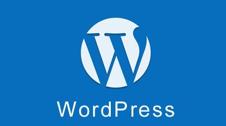 WordPress 使用 WP Local Dev Environment 插件禁用外部数据请求 WordPress网站维护 wordpress教程  第1张