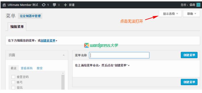 """修复 WordPress 简体中文版的菜单""""显示选项""""无法点击 WordPress网站维护 wordpress教程  第1张"""