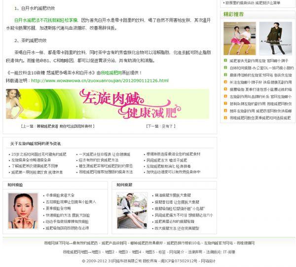 曾经年入百万的我哇减肥网整体优化方案 优化 河南seo SEO  第3张