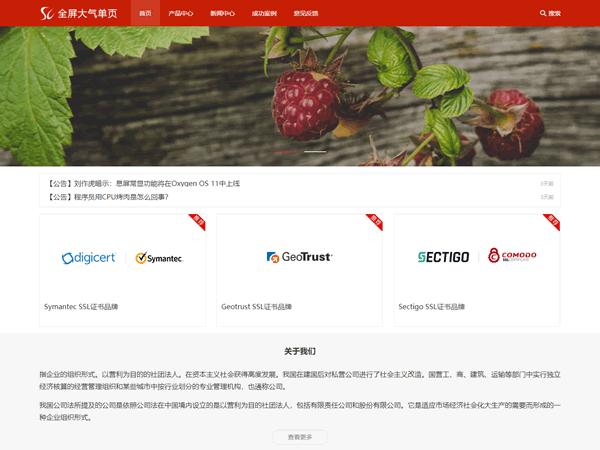 企业官网|全屏大气单页