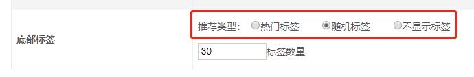 网站底部可以切换热门标签和随机标签  网络项目推广单页网站模板  第1张