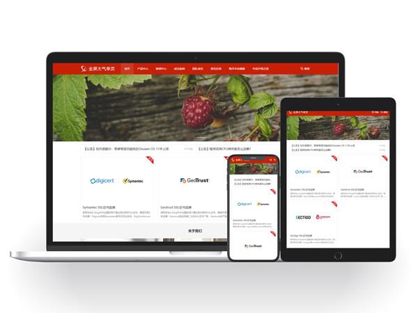 全屏大气公司官网|单页网站模板